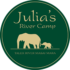 Julia's River Camp